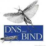 Tutorial: Cómo instalar un servidor DNS en Ubuntu Server