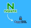 Cómo instalar certificados SSL en Nginx con OpenSSL